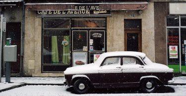 Adam Gopnik, Hiver. Cinq fenêtres sur une saison