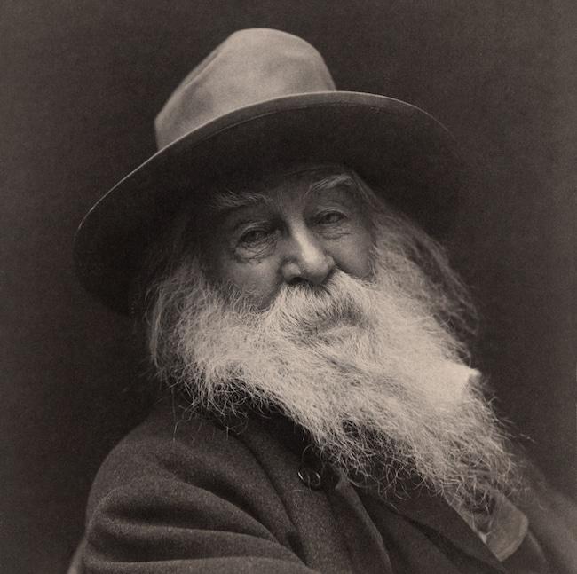 Whitman cahiers d'amérique