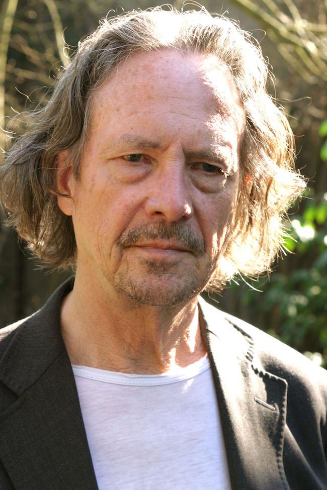 Peter Handke, Essai sur le fou de champignons. Une histoire en soi
