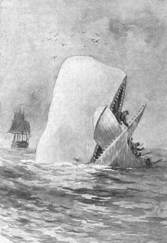 Herman Melville, Moby Dick.