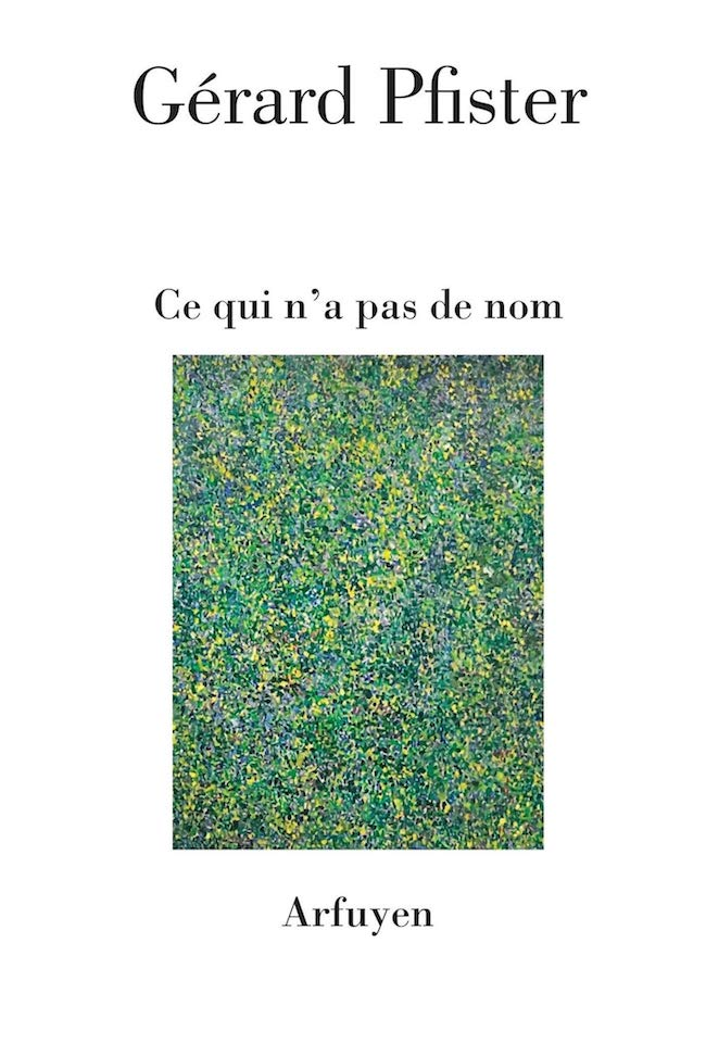 Gérard Pfister, Ce qui n'a pas de nom
