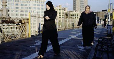 Marie-Pierre Ulloa, Le nouveau rêve américain. Du Maghreb à la Californie