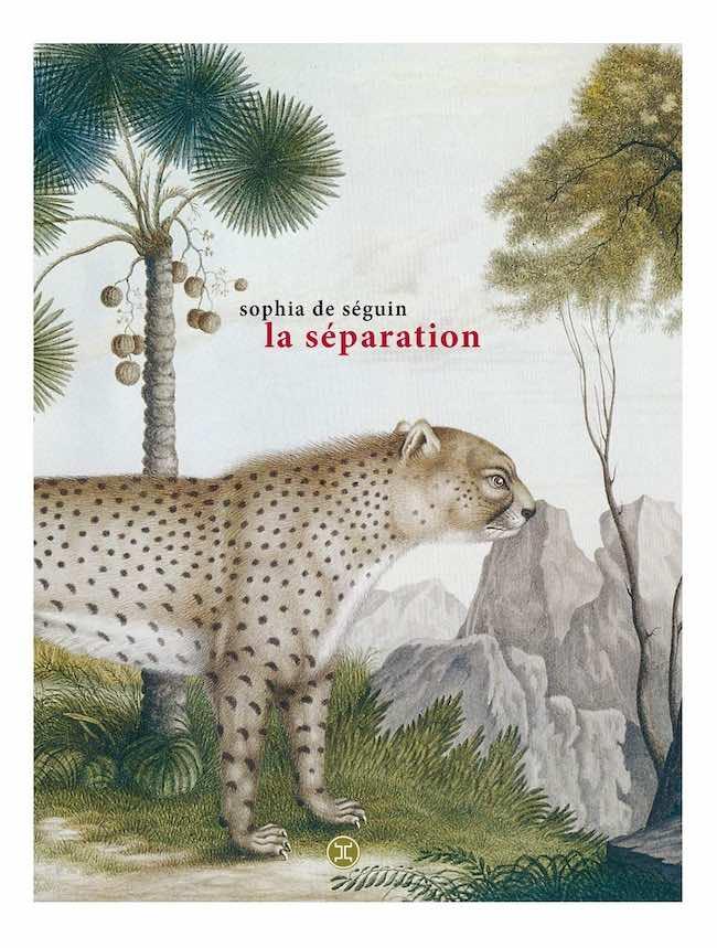 Sophia de Séguin, La séparation