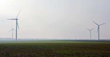 L'écologie pour sauver nos vies, de Noël Mamère : de Thoreau à Thunberg