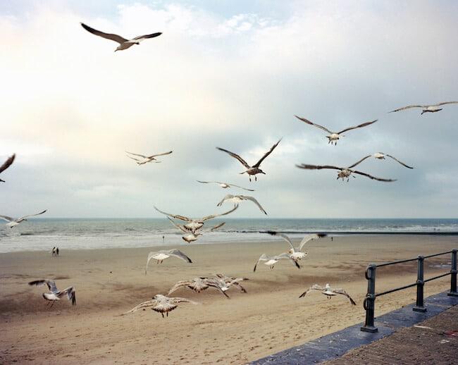 Nick Hunt, Où vont les vents sauvages