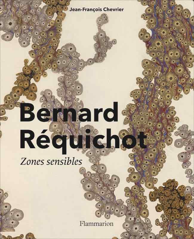 Jean-François Chevrier, Bernard Réquichot. Zones sensibles