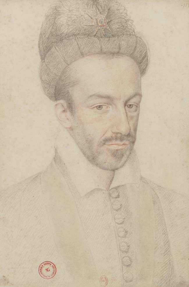 Henri III et Henri IV par Nicolas Le Roux et Simone Bertière