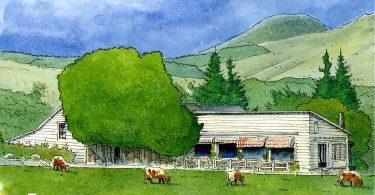 Le monde de l'Angle, de Corinne Legoy : voix paysannes