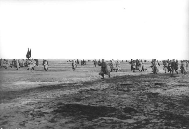 Cronstadt 1921 : la chronique à plusieurs voix d'une révolte