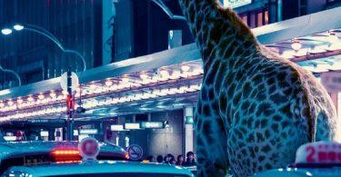 Zoomania : le deuxième roman d'Abby Geni raconte une vie en friche
