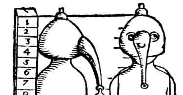 Histoire de la médecine, Le corps et ses raisons : actualité de Starobinski