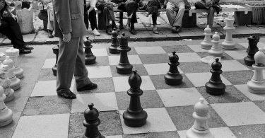 La vie rêvée du joueur d'échecs, de Denis Grozdanovitch : fous d'échecs