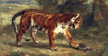 Constellation du tigre, de Yannick Le Marec : pas de côté