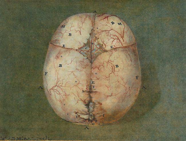 Dialogues sur la pensée, l'esprit, le corps et la conscience de Peter Hacker