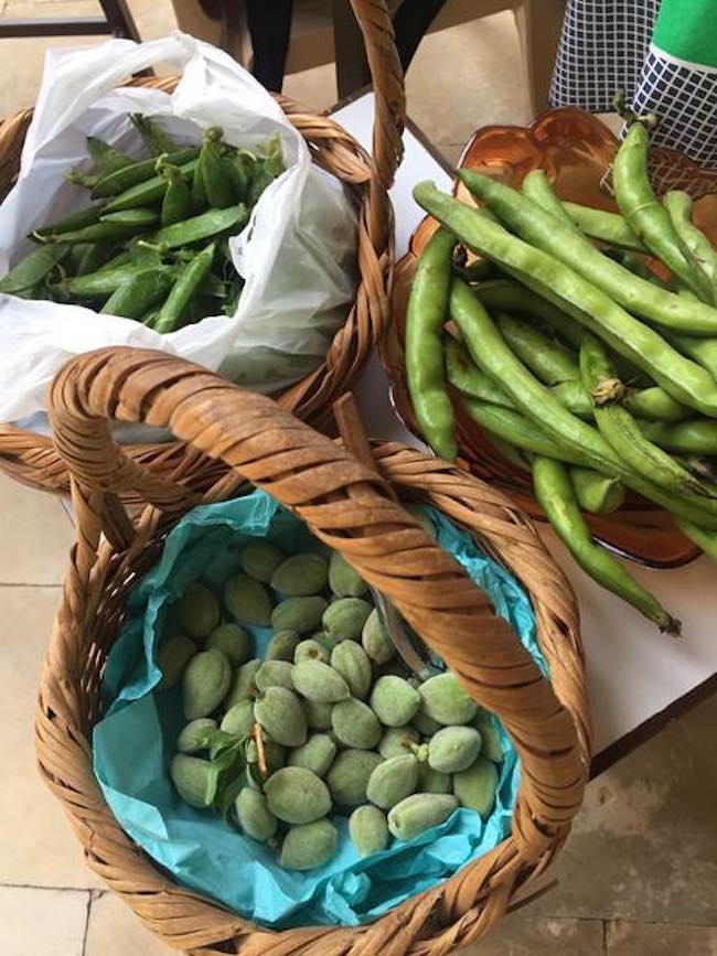 961 heures à Beyrouth, de Ryoko Sekiguchi : saveur et savoir