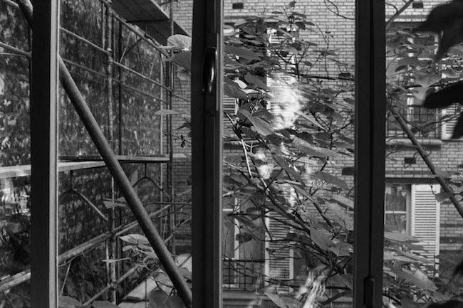 Marabout de Roche, de Karine Miermont : un portrait de Denis Roche